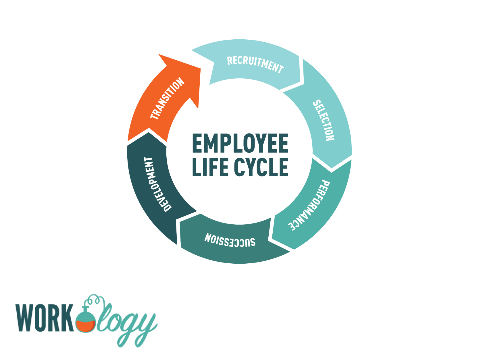Employee Life Cycle Images And Employee Life Cycle